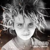 Matisyahu - Live Like a Warrior