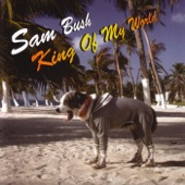 Sam Bush - Eight More Miles to Louisville