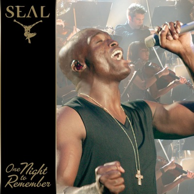 One Night to Remember (Live) - Seal
