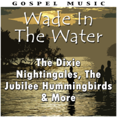 Wade In the Water - The Dixie Nightingales, The Jubilee Hummingbirds & More
