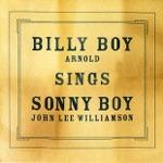 Billy Boy Arnold - Decoration Day