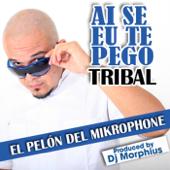 [Download] Ai Se Eu Te Pego (Tribal) MP3