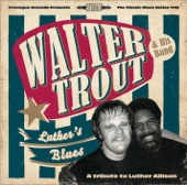 Luther's Blues (A Tribute To Luther Allison)