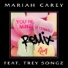 You're Mine (Eternal) [Remix] [feat. Trey Songz] - Single, Mariah Carey