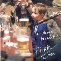 A Cheap Present by Birkin Tree on Apple Music