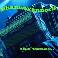 The Tunes by Shanneyganock on Apple Music
