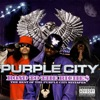 Road to the Riche$ - the Best of the Purple City Mixtapes, Purple City