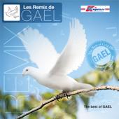 Les Remix De Gael Vol.1 & 2