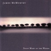 James McMurtry - Gone to the Y