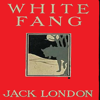 Jack London - White Fang (Unabridged)  artwork