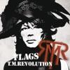 FLAGS - Single ジャケット写真