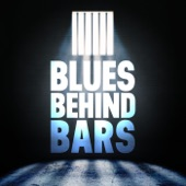 Big Mama Thornton - Jail
