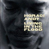 Horace Andy - After All