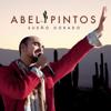 Abel Pintos - La Llave ilustración