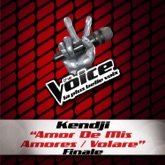 Amor de mis amores / Volare (The Voice 3) - Single