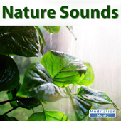 Nature Sounds-Sounds of Nature
