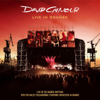 David Gilmour - Fat Old Sun (Live) artwork