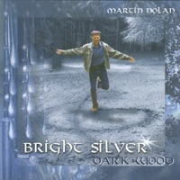 Bright Silver Dark Wood by Martin Nolan on Apple Music