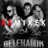 Belehalok (Hamvai P.G. & Roberto Winny Remix)