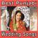 Best Punjabi Wedding Songs, Vol. 4 - Various Artists