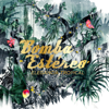 Elegancia Tropical - Bomba Estéreo