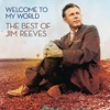Icon Welcome to My World - The Best of Jim Reeves