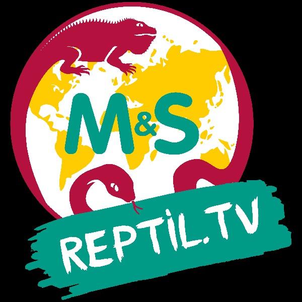 Reptil.TV