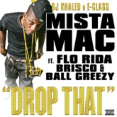 Drop That (feat. Flo Rida, Brisco, Ball Greezy) - Single