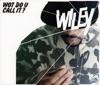 Wot Do U Call It? - EP, Wiley
