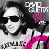 David Guetta - Sexy Bitch (feat. Akon) [Extended] artwork