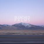 Bleached Palms - Bury It (Festive/Destructive EP)