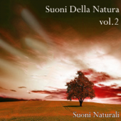 Canto di Uccelli con la Musica (feat. Llewellyn)