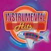 Instrumental Hits. Musik für Unterwegs - Various Artists