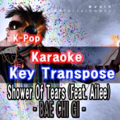 K-Pop Karaoke Key Transpose - I'm Sorry