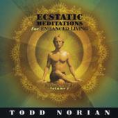 Ecstatic Meditations For Enhanced Living-Todd Norian