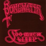 Bongwater - The Drum