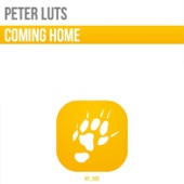 Coming Home (Extended Mix) - Single