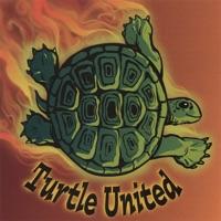 Turtle United by Turtle United on Apple Music