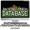 Backing Track Database - The Professionals Perform the Hits of Anita Baker (Instrumental), The Professionals