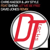 Let Me Be Free (feat. Shena) [David Jones Remix] - Single