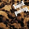 オリジナル曲|Pantera
