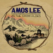 Amos Lee - The Darkness