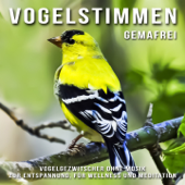 Vogelstimmen (Vogelgezwitscher ohne Musik zur Entspannung, für Wellness und Meditation)