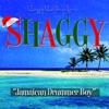 Jamaican Drummer Boy - Single, Shaggy