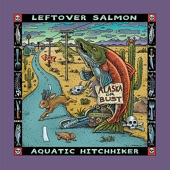 Leftover Salmon - Gulf of Mexico
