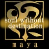 soul without destination (feat. 神威がくぽ) - Single
