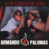 Armando Palomas - Perdón Por La Extraña Manera De Despertarte