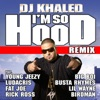 I m So Hood feat Young Jeezy Ludacris Busta Rhymes Big Boi Lil Wayne Fat Joe Birdman Rick Ross Remix Single