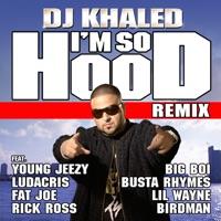 I'm So Hood (feat. Young Jeezy, Ludacris, Busta Rhymes, Big Boi, Lil Wayne, Fat Joe, Birdman & Rick Ross) [Remix] - Single Mp3 Download