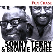 Sonny Terry - Sportin' Life Blues